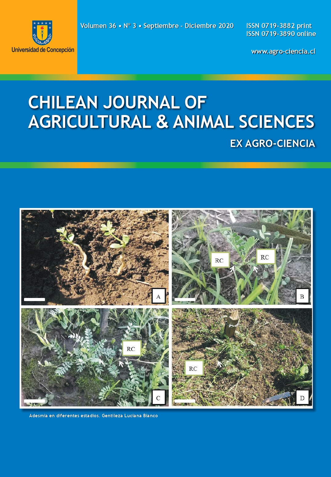 Chilean Journal of Agricultural and Animal Sciences